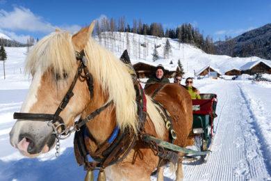 Pferdeschlittenfahrten im Winterurlaub in Radstadt, Salzburg