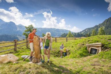 Alles Alm - Sommerurlaub im Salzburger Land