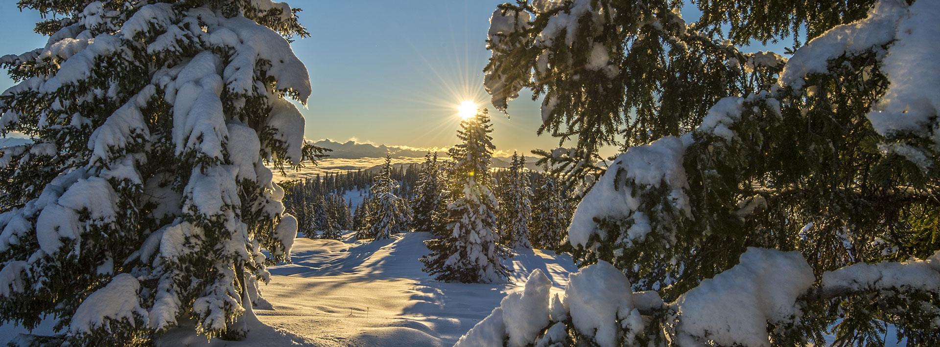 Winterurlaub & Skiurlaub in Radstadt, Salzburger Land